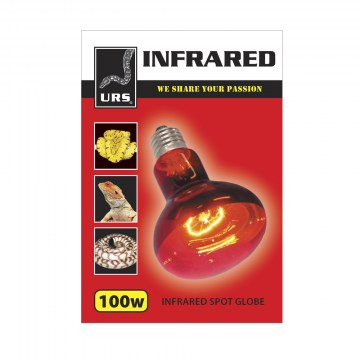 Globe Infrared 100w (Box of 50)