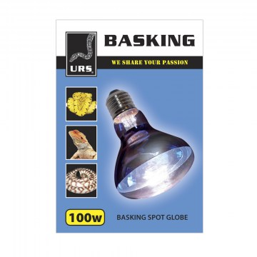 Globe Basking Daylight (Box of 50) 100w